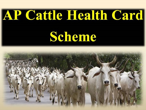 AP-Cattle-Health-Card-Scheme