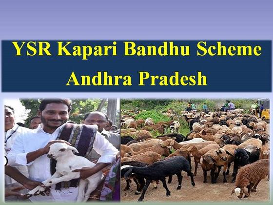 YSR-Kapari-Bandhu-Scheme-in-Andhra-Pradesh