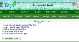 ikhedut portal gujarat application status